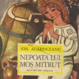 Ion agarbiceanu - nepoata lui mos mitrut - Carte educativa
