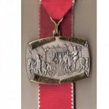 CIA 175 Medalie heraldica(caleasca medievala, cu printesa) - interesanta -(germana)