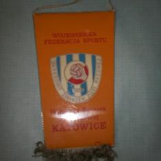 284 Fanion Wojewodzka Federacja Sportu( handbal -Polonia) - Fanion handbal