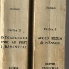 Cezar Petrescu / INTUNECARE - 2 volume, editie definitiva, 1942 - Carte Editie princeps
