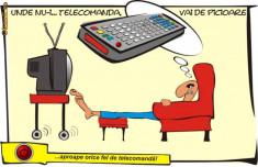 Telecomanda TV - Telecomanda LUXMAN DVD 470