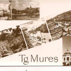 Carte postala- TARGU MURES