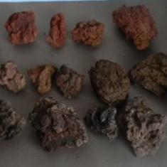 Roca vulcanica pentru acvariu