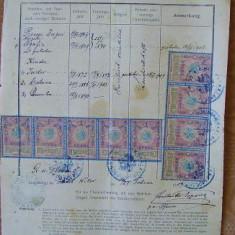 Document austriac, Bucovina, 1909, 10 fiscale - Hartie cu Antet