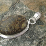 Pandantiv din ARGINT 925 cu turritella - Pandantiv argint