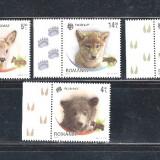 2012 - ROMANIA - PUI DE ANIMALE SALBATICE  LP 1960