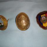 Ordin/ Decoratie - Lot 3 insigne RSR