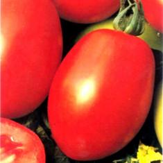 Seminte rosii - ROSII RIO GRANDE - seminte