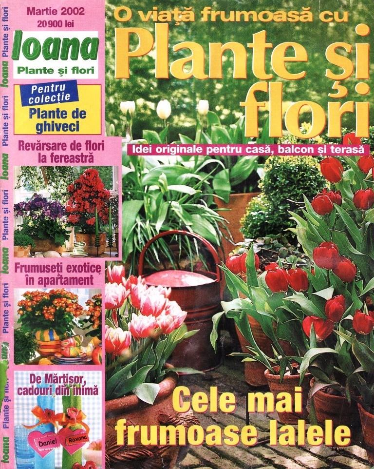 Plante si flori cumpara cu incredere de pe for Plante xiaomi