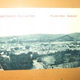 Carte postala Lipova Udvozlet Lipparol a varos laketpe Gruss aus Lippa Stadtansicht 1910, Circulata, Printata