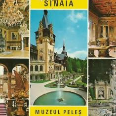Carti Postale Romania dupa 1918, Circulata, Fotografie - NGL: Romania Colaj SINAIA Muzeul Peles Carte Postala Color Circulata Carti Postale Vechi CP