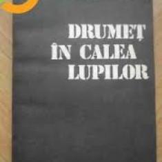 Roman - Nicolae Dragos. Mihai Stoian - Drumet in calea lupilor