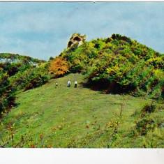 Bnk cp Comuna Petru Rares - Judetul Bistrita Nasaud - Ruinele Cetatii Ciceului - Carti Postale Romania dupa 1918