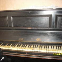 PIANINĂ - Pianina Altele