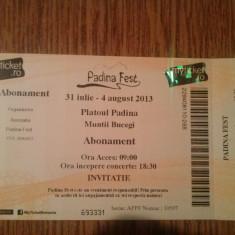 2 Abonamente Padina Fest 31 iulie-4 august - Bilet concert