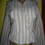 E- VIE CLOTHING-CAMASA, NR.16( 44), AMESTEC BUMBAC, CA NOUA, SUPER CALITATE, GERMANIA - Camasa dama, Maneca lunga, Universala
