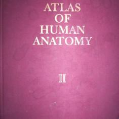 Atlas of human anatomy(atlas de anatomie umana/volumul 2)-Sinelnikov