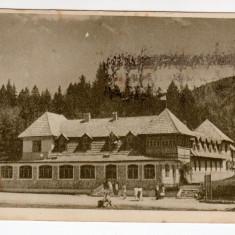 POIANA STALIN -POIANA BRASOV CABANA, CIRCULAT, LIBRARIA NOASTRA 388 - Carti Postale Romania dupa 1918, Circulata, Printata