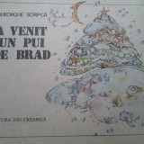 A VENIT UN PUI DE BRAD - Gheorghe Scripca - Carte educativa