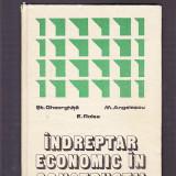 INDREPTAR ECONOMIC IN CONSTRUCTII - Carti Constructii