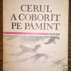 Roman - Carte - Elena Gronov-Marinescu - Cerul a coborit pe Pamint