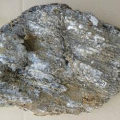 Fosila roca, Naturala - Floare de mina de dimensini mari. REDUCERE DIN NOU REDUCERE