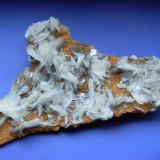 Mineral din colectie - Piesa rara - BARITA PE SIDERIT - Fosila roca