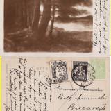 Eminescu - Salmen - Freamat de codru, Circulata, Printata