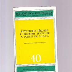 BIBLIOTECA ECONOMICA -RETRIBUTIA -PIRGIE A FOLOSIRII EFICIENTE A FORTEI DE MUNCA - Carte Contabilitate