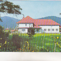 Carti Postale Romania dupa 1918 - Bnk cp Tabara de copii de la Bucsoaia - Jud Suceava - circulata