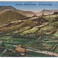 Salutari din Maramures, Valea Borsa, necirculata, 1917 - Carte Postala Maramures 1904-1918