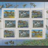 U.R.S.S.1990 Pasari:Rate-coala mica SU.1807 - Timbre straine, Nestampilat