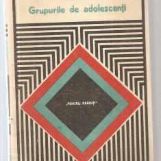 Roman - ADRIAN NECULAU - GRUPURILE DE ADOLESCENTI