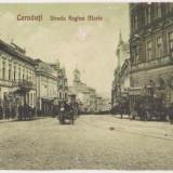 Cernauti (Basarabia),Strada Regina Maria,animatie,trasuri,masina de epoca,necirculata, 1926