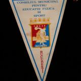 Colectii - MCF - FANION - CLUBURI - CONSILIUL MUNICIPAL PT ED FIZICA SI SPORT- BUCURESTI