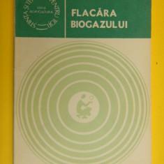 FLACARA BIOGAZULUI Vasile Stancu biogaz - Carti Energetica