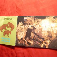 Carnet cu 11 ilustrate duble( mare si mica) -Pestera Ursilor judet Bihor - Carte Postala Transilvania dupa 1918, Necirculata