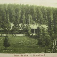 Stana de Vale, Biharfured Episcopia 1930 - Piesa de colectie ! - Carte Postala Transilvania dupa 1918, Circulata