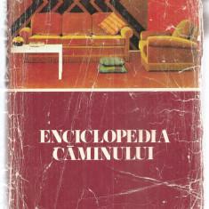 (C6098) ENCICLOPEDIA CAMINULUI - Carte Hobby Amenajari interioare