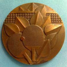 Medalie Tenis de masa - Medalii Romania, An: 1111