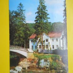 HOPCT 15242 BISTRITA-TERASA MOTELULUI CODRISOR -JUD BISTRITA NASAUD[CIRCULATA] - Carti Postale Romania dupa 1918, Printata