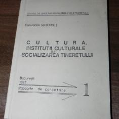 Carte Sociologie - CONSTANTIN SCHIFIRNET - CULTURA. INSTITUTII CULTURALE SI SOCIALIZAREA TINERETULUI. RAPOARTE DE CERCETARE