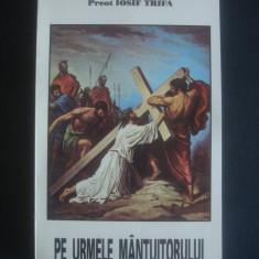 IOSIF TRIFA - PE URMELE MANTUITORULUI - Carti ortodoxe