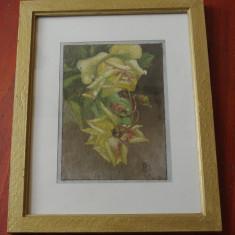 Tablou cu rama din lemn si sticla - pictura flori de trandafir / semnat 1969 !!!, Tempera, Altul