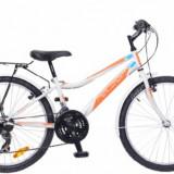 """Bicicleta Neuzer Bobby 24"""" City 18 vit"""