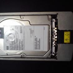 BD14685A26 HP 146-GB U320 SCSI HP 10K - Hard Disk HP, 100-199 GB