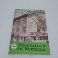 Revista/Ziar - REVISTA APICULTURA ÎN ROMÂNIA NR. 10-OCTOMBRIE 1989