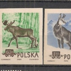 POLONIA 1954 – ANIMALE SALBATICE, serie NDT nestampilata S79