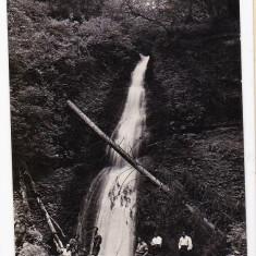 Carte postala Stana de Vale Cascada Serenada suprastampila Bihor - Carte Postala Transilvania dupa 1918, Circulata