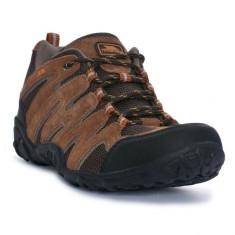 Pantofi barbatesti Trespass Higgs Brown (MAFOTNI20001) - Pantofi barbati Trespass, Marime: 41, Culoare: Maro